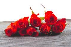 Roses rouges sur un fond blanc Photos libres de droits