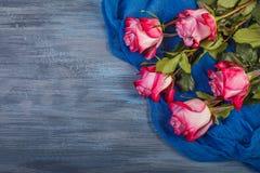 Roses rouges sur un fond bleu photo libre de droits