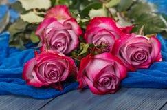 Roses rouges sur un fond bleu image stock