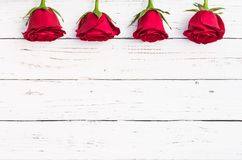 Roses rouges, symbole pour l'amour sur le fond en bois blanc de vintage pour le jour de valentines ou mariage Photographie stock libre de droits