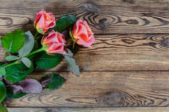 Roses on rustic table Royalty Free Stock Photo