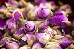 Roses sèches photo stock