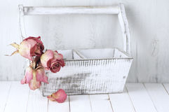 Roses sèches dans la boîte en bois image stock