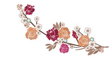 Roses and sakura flowers. Illustration of a tree branch with roses and sakura flowers Stock Photography