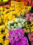 Roses for sale. Red yellow white and pink roses for sale Royalty Free Stock Image