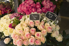 Roses for sale in Paris flower shop Royalty Free Stock Photography