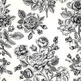 Roses sans couture d'esprit de modèle Images libres de droits
