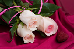 Roses on satin background Royalty Free Stock Images