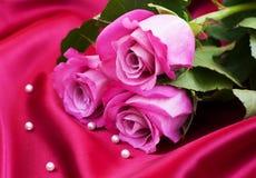 Roses on satin background Royalty Free Stock Image