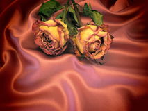 Roses on satin Royalty Free Stock Images