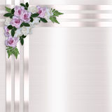 Roses and Satin Ribbons Floral Background. Image and illustration composition lavender roses, white, gardenias, satin ribbons background for wedding invitation stock illustration