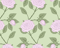 Roses seamless. Royalty Free Stock Image