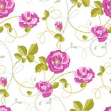 Roses seamless background Royalty Free Stock Photo