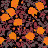 Roses seamless pattern. Royalty Free Stock Photo