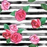Roses seamless pattern vector illustration
