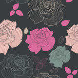 Roses seamless patterns. Vector seamless roses pattern. Vintage elegance floral background Stock Image