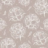 Roses. Seamless vector pattern Royalty Free Stock Images