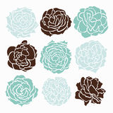 Roses set Stock Photo