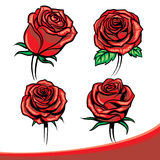 Roses set Royalty Free Stock Images