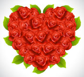 Roses in a shape of heart Royalty Free Stock Image