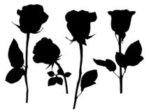 Roses silhouettes, vector images editable EPS AI vector clipart. Roses, vector images editable EPS AI vector clipart rose black images clip art nature flower royalty free illustration