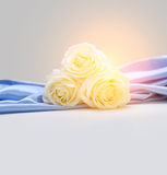 Roses on silk background Royalty Free Stock Images