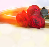 Roses on silk background Stock Photos