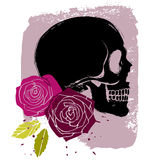 Roses and skull Stock Image