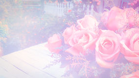 Roses soft blur background in vintage pastel tones. Stock Image