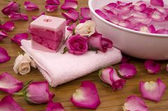 Roses in a Spa royalty free stock image