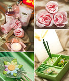 Roses spa and aromatherapy. Incense sticks Royalty Free Stock Image