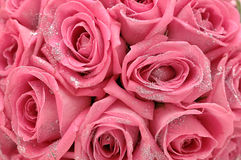 Roses with sparkles Stock Photo