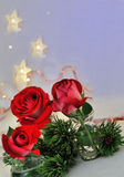 Red Roses and Shining Stars. Holiday background with stars roses and pine branch Royalty Free Stock Image