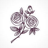 Roses. Stylized flower bouquet hand drawing. Outline icon symbol. Present for wedding, birthday invitation card. Roses. Stylized flower bouquet hand drawing Royalty Free Stock Images