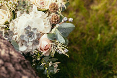 Roses, succulents and other flowers in wedding bouquet on green Stock Photos