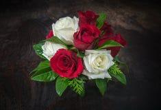 Roses sur l'obscurité Images stock