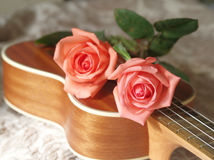 Roses sur l'ukulélé Photographie stock libre de droits