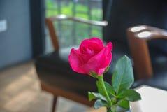 Roses roses sur la table, le concept de l'amour et coeurs sur Valen Photo libre de droits