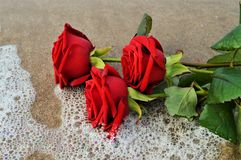 Roses sur le bord de la mer, symboles Photo stock