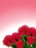 Roses sur le fond fané Photos libres de droits
