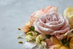 Roses sur le fond gris Photographie stock