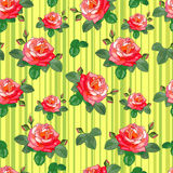 Roses sur le fond rayé jaune Illustration Stock