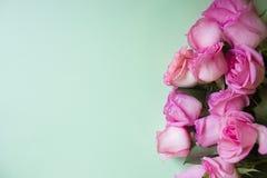 Roses roses sur le fond vert Fond de jour de valentines image stock