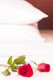 Roses sur le lit avec le fond d'oreillers Images libres de droits