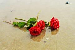 Roses sur le sable, symboles Photo stock