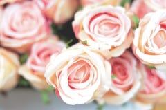 Roses roses sur un fond brouillé images stock