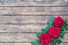 Roses sur un fond en bois Photo libre de droits