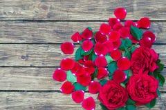 Roses sur un fond en bois Images stock