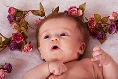 Roses surrounding baby girl's head Stock Photos