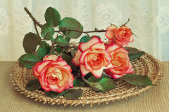 The roses on the table on a wicker platter. Royalty Free Stock Image